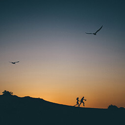 night couple birds sky flying running adventure sunset photography travel UGC content